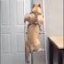 Μα πού πάω;