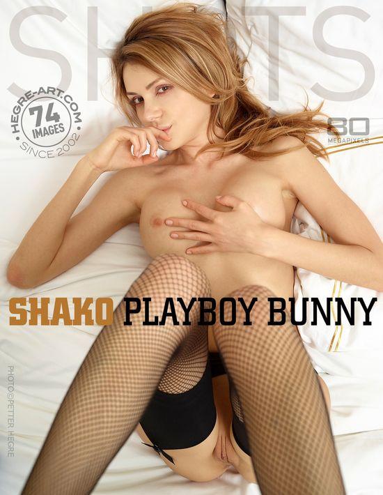 Shako_Playboy_Bunny1 Ddgre-Arm 2013-08-08 Shako - Playboy Bunny i0818