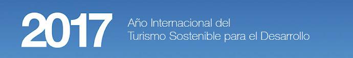 Año Internacional