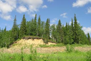 А так хочется постоять лагерем в лесочке, река Шапкина