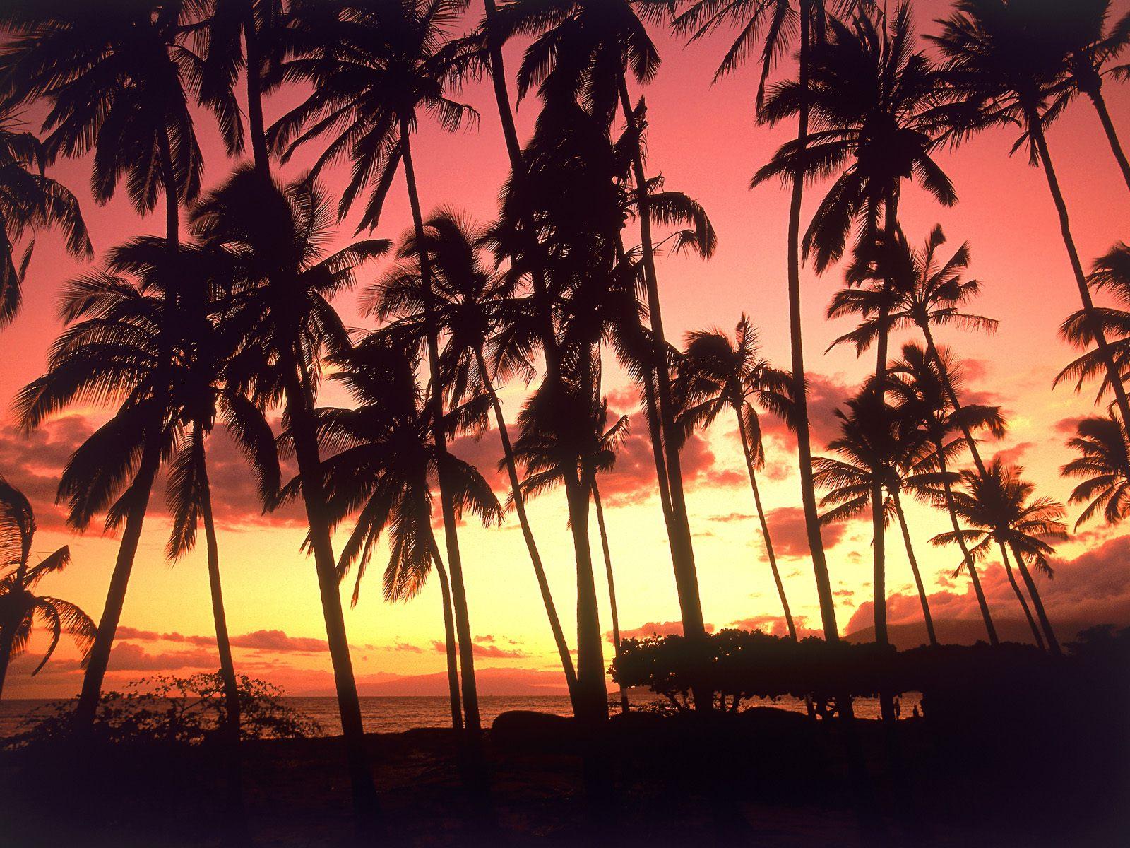 http://1.bp.blogspot.com/-pI3LlQ2Jc_s/UElenCH3jHI/AAAAAAAAAaI/60Ozftc8M8k/s1600/Hawaii-Sunset%2B.jpg