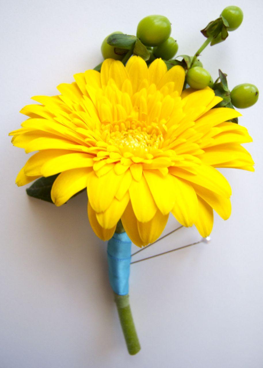 The Flower Girl Blog