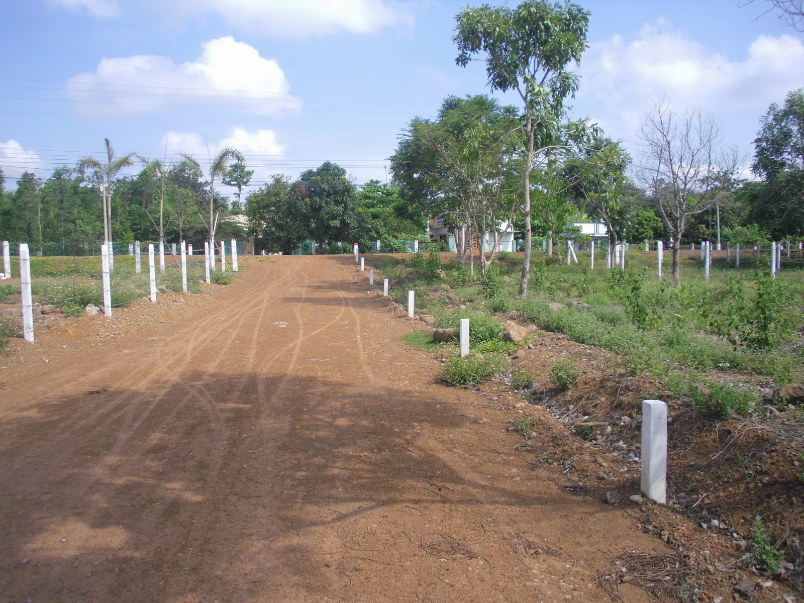 đất thổ cư mặt tiền đường ĐT 769