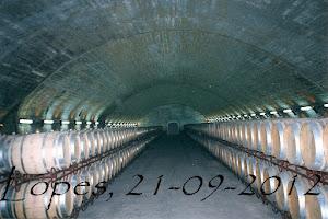 Armazém de vinho-Quinta do Esporão