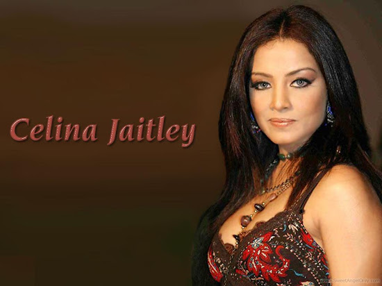 Celina Jaitley Wallpapers HD