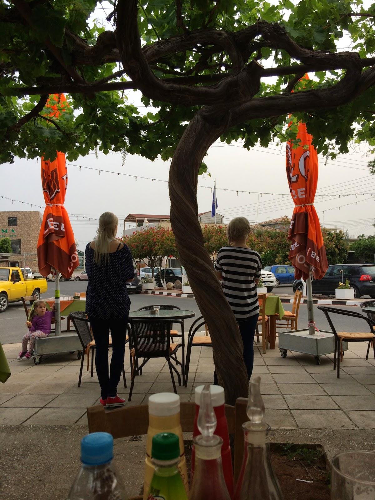 Yiannis Klamataria Taverna Mandria, Paphos, Cyprus madmumof7.com