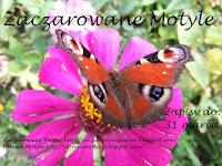 Zaczarowane motyle - wspólne Candy