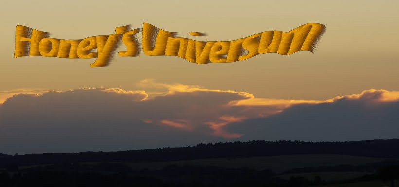 Honey´s Universum