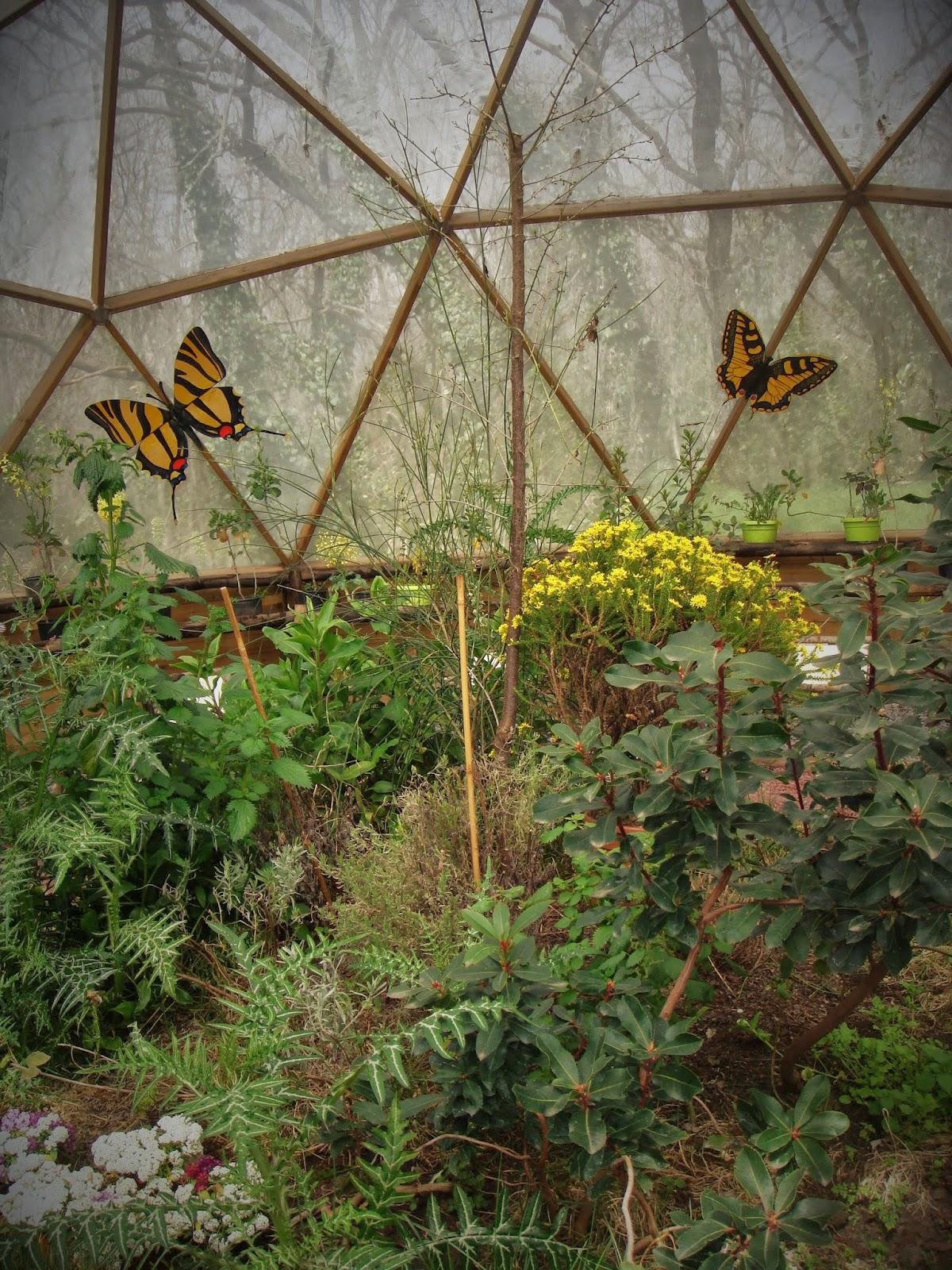 Casa delle Farfalle - Parco Monte Serra
