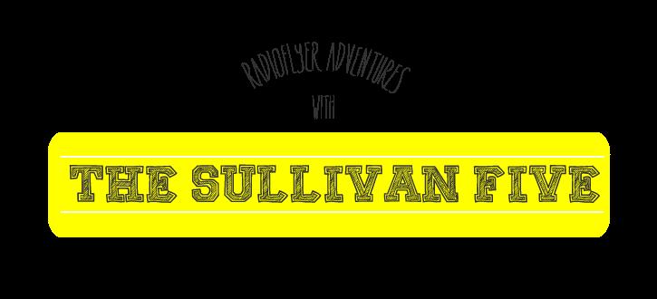 The Sullivan 5