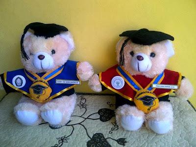 boneka wisuda teddy bear, boneka wisuda murah