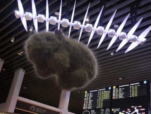 Shane at airport