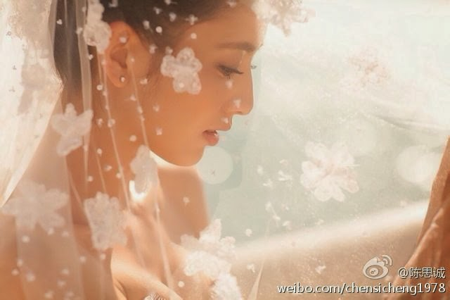 Tong Liya & Chen Sicheng's Wedding in early 2014 - Super Star