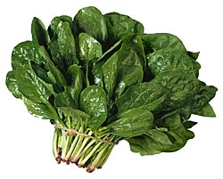 Spinach for health benefits