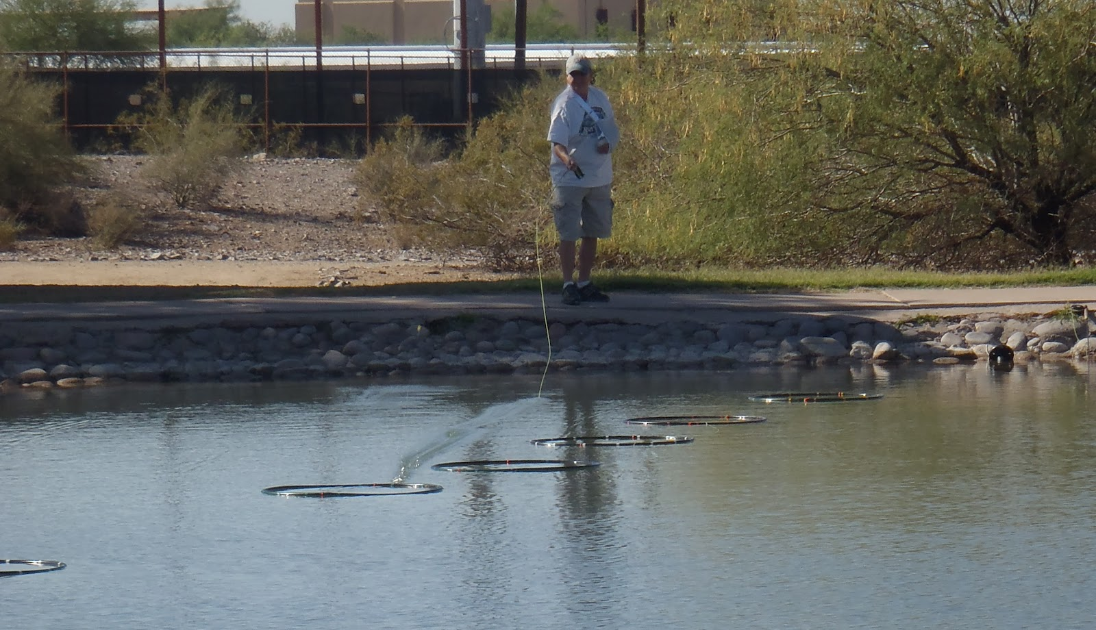 Phoenix fly casters fly fishing arizona rio salado for Fishing in phoenix arizona