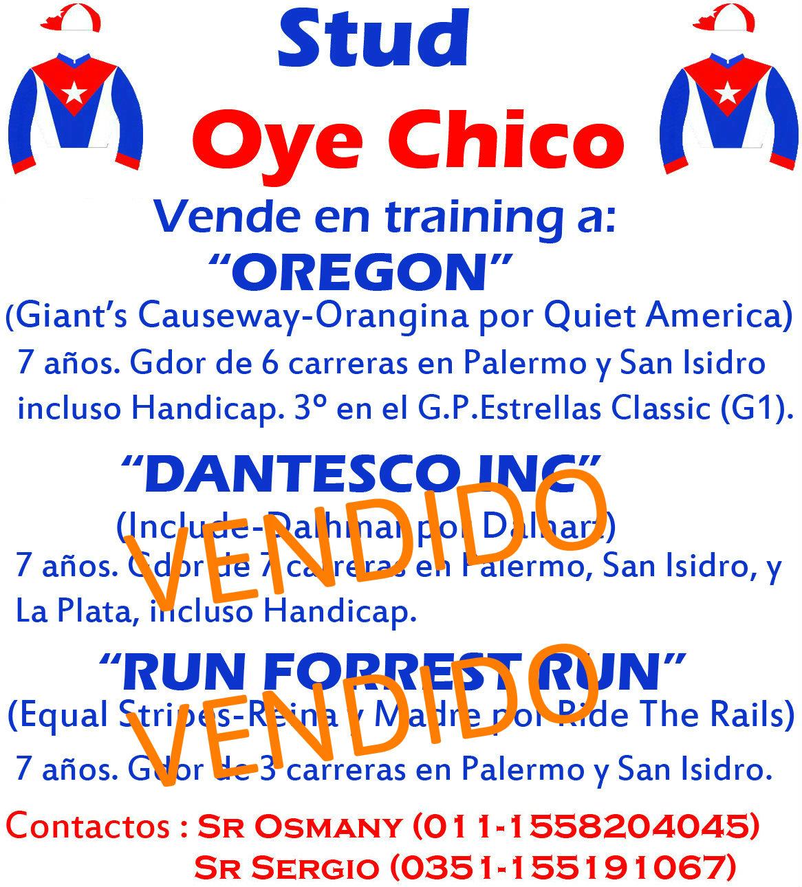 OYE CHICO TRAINING