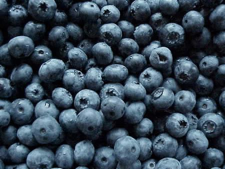 http://1.bp.blogspot.com/-pLOi6XZ3SFM/TsRe2LYOpSI/AAAAAAAAAI0/1bbv2c44ufs/s1600/blueberry_fruits5457.jpg