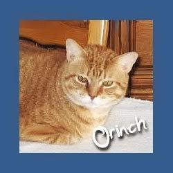 Orinch