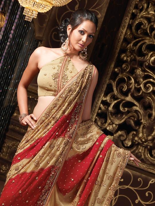 how to wear a sari site youtube.com
