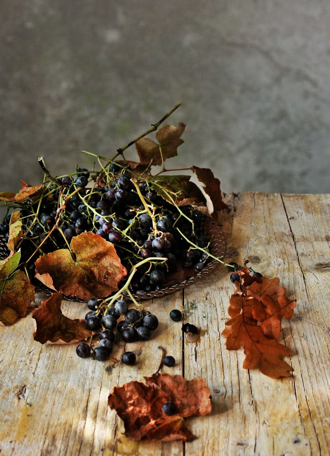 : Flaugnarde de uvas e avelã | Black grapes and hazelnut flaugnarde ...