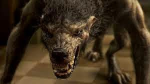 imagen hombre lobo