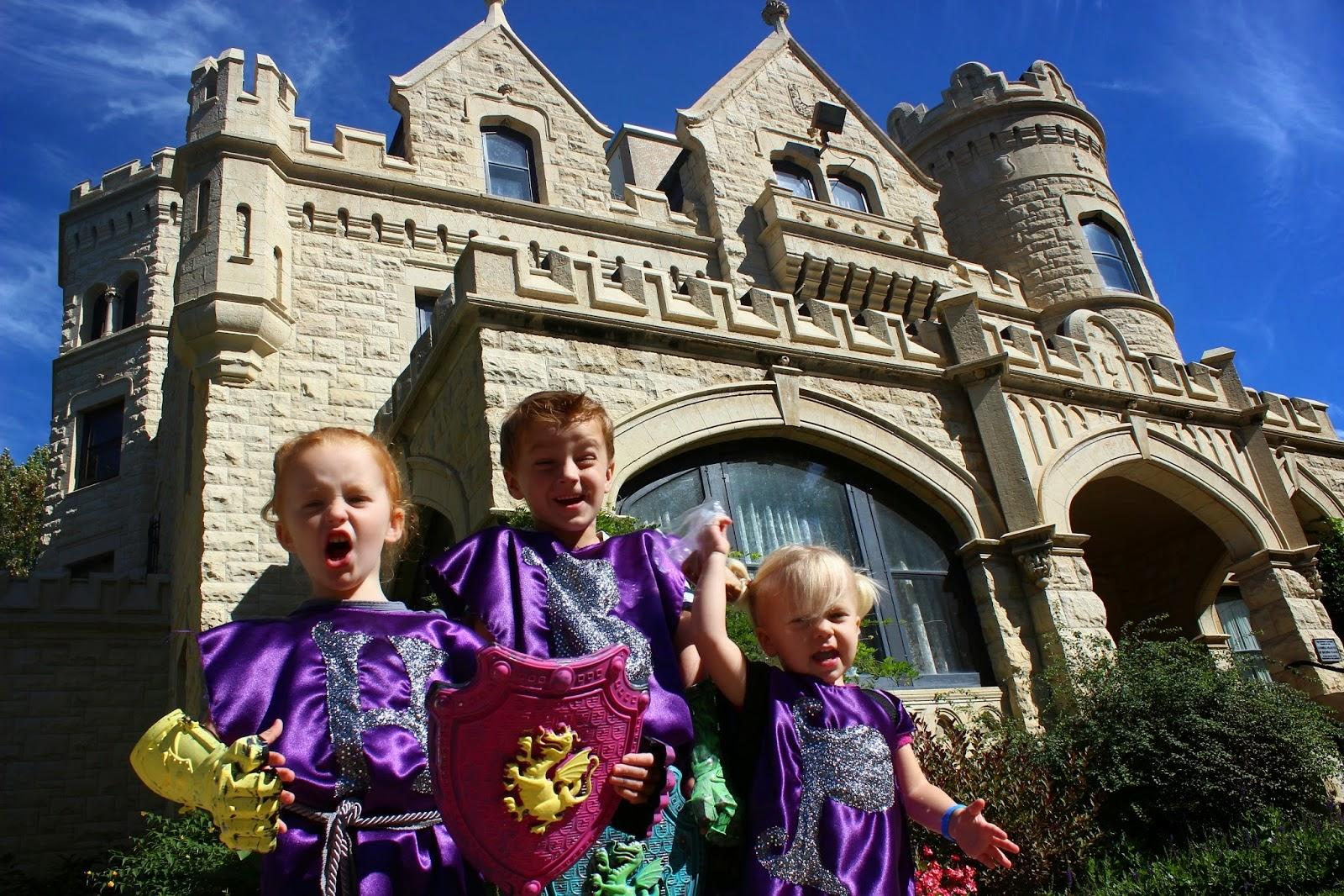Medieval Knights & Castles Unit