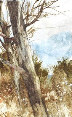 Puzzle Bark Bog Trees: L.C.