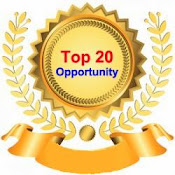 TOP 20 OPPORTUNITY