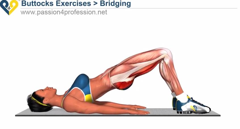 Workout da Semana: Exercício para Tonificar o Rabo