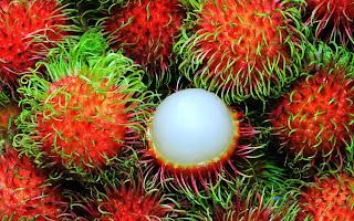 Manfaat dan nutrisi pada buah rambutan