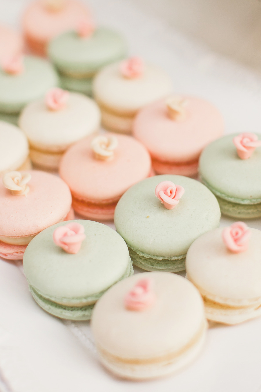 pink peach macarons rose - photo #14