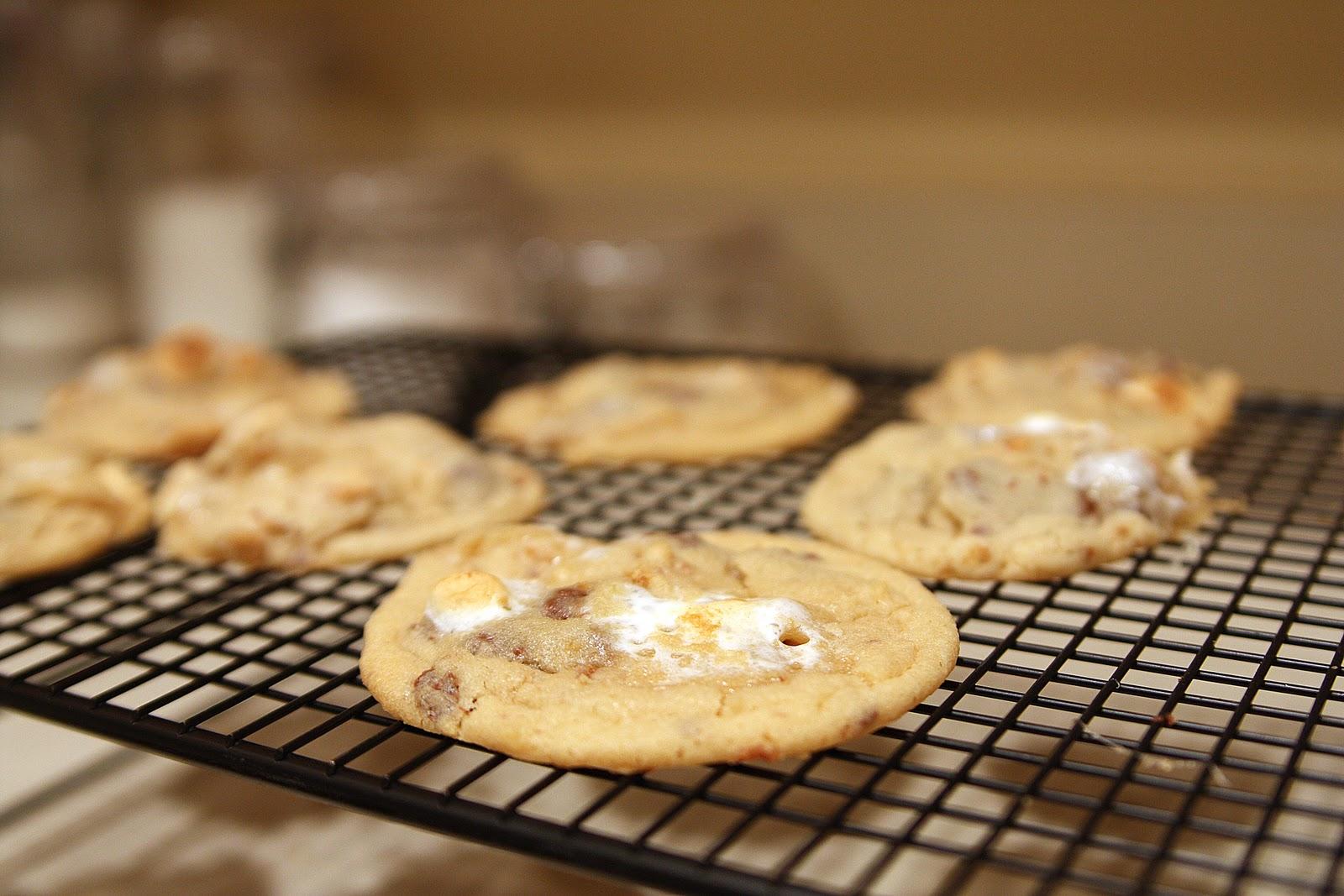 Ooey, Gooey, Delicious...S'mores Cookies! -