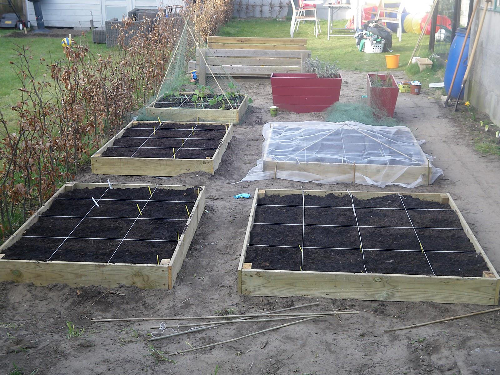 Vierkante Meter Tuin : De lekkerste groenten kweek je in je eigen moestuin horta