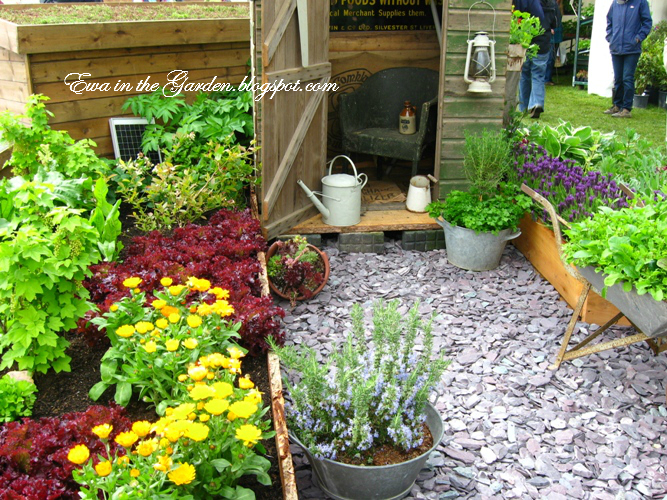 Ewa in the garden cute vegetable garden ideas for Backyard vegetable garden designs