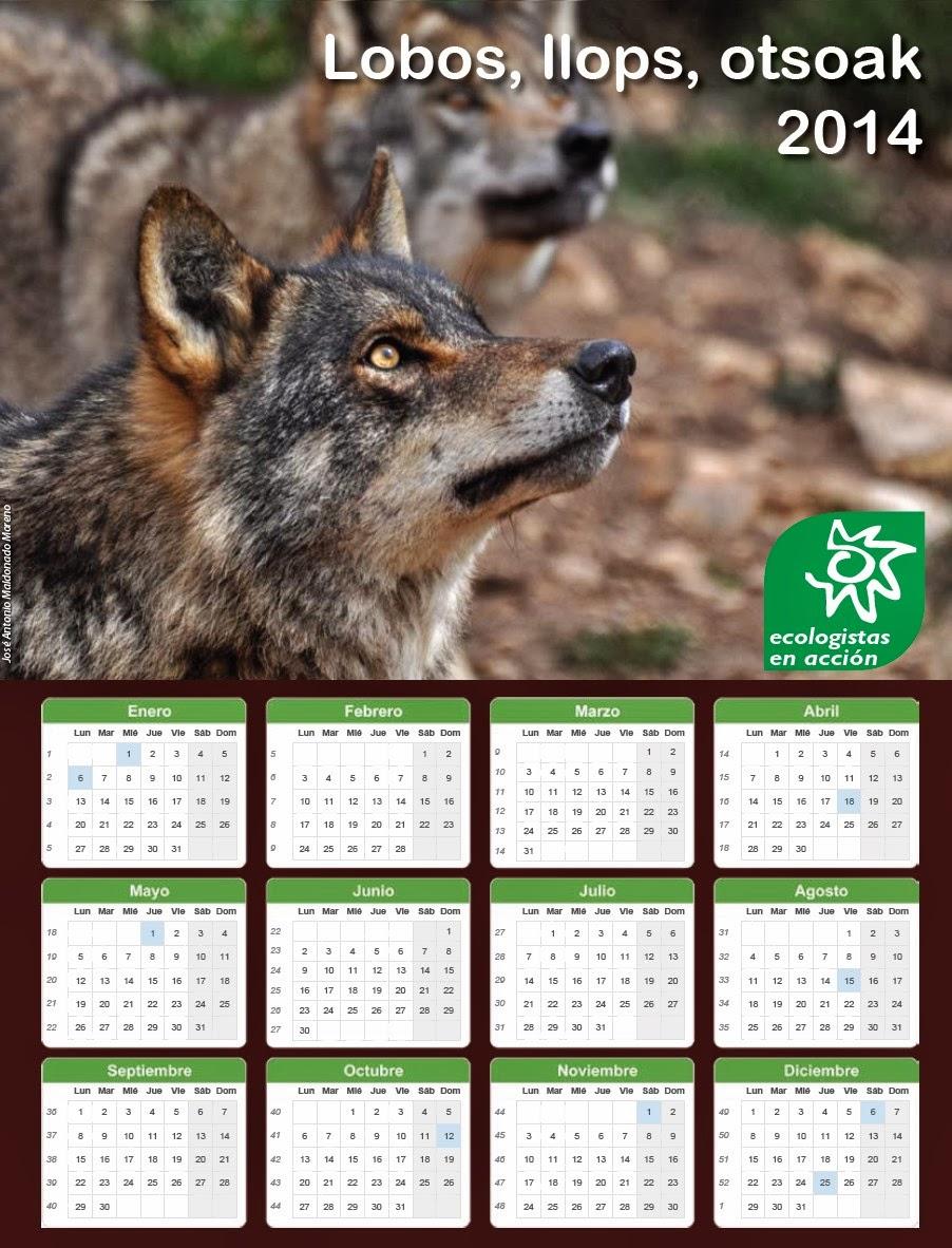 fotos de animales salvajes en accion - 5 animales en peligro de extinción en Colombia – Publimetro