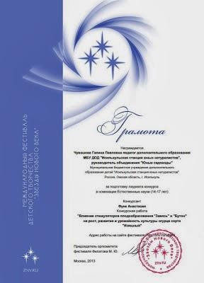 """Достижения педагогов МБУ ДОД """"ИСЮН"""". Международный уровень"""