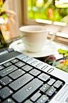 bisnis internet, peluang usaha