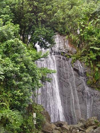 Water Fall in El Yunque