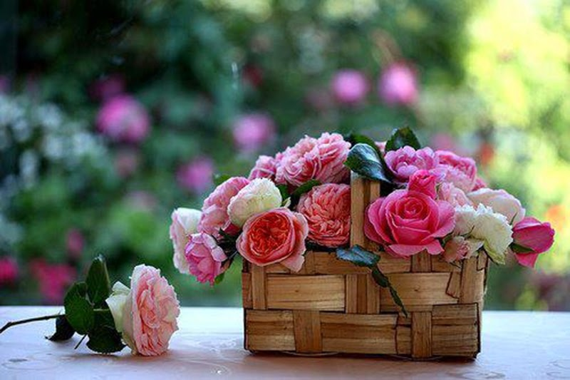 Beautiful Bouquet of Pink Roses Flowers Images Online