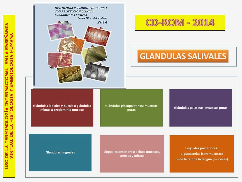 CD-ROM -2014- GLANDULAS SALIVALES