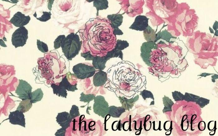 the ladybug blog
