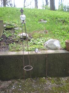 Garden Finds