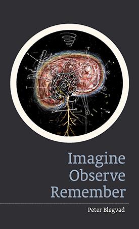 Imagine, Observe, Remember