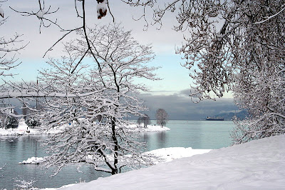 Snow fall Beautiful Wall Papers