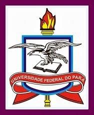 Portal-UFPA