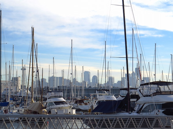 elliott bay trail, elliott bay marina