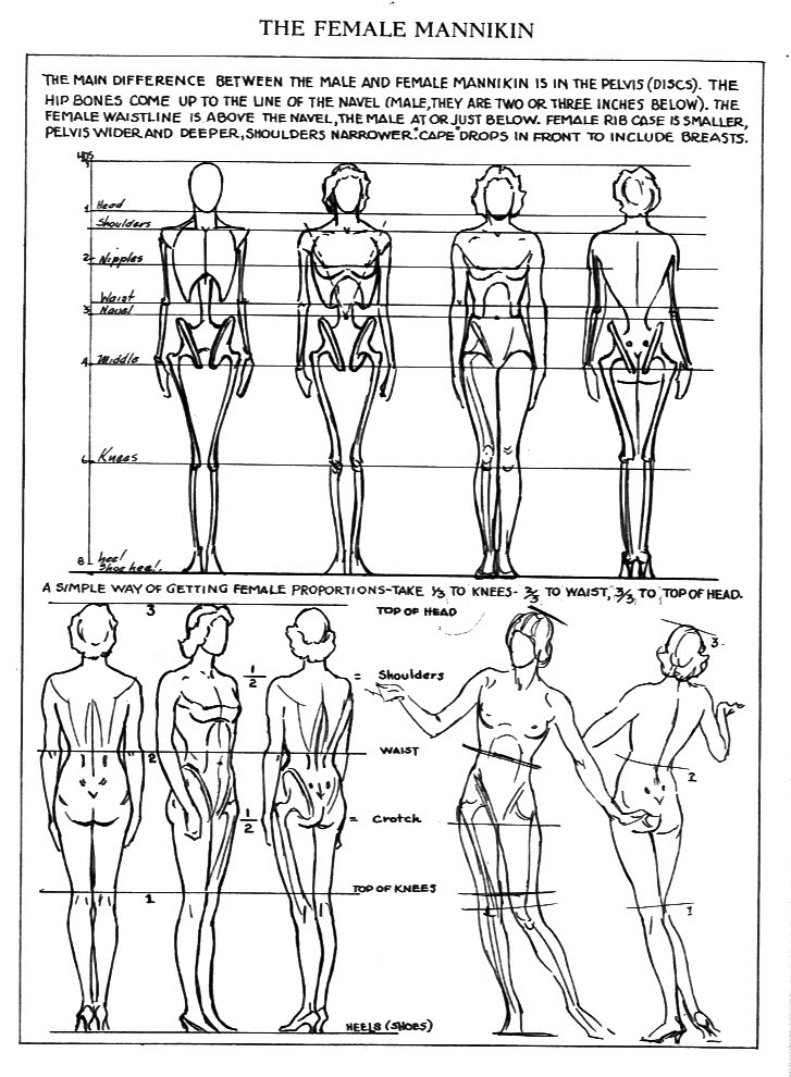 Female Anatomy Drawing Reference Guide | Drawin...