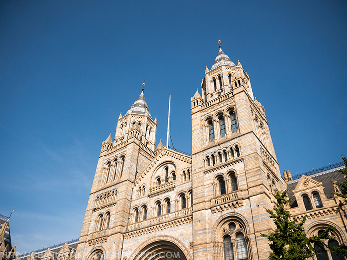 Natural History Museum in London building