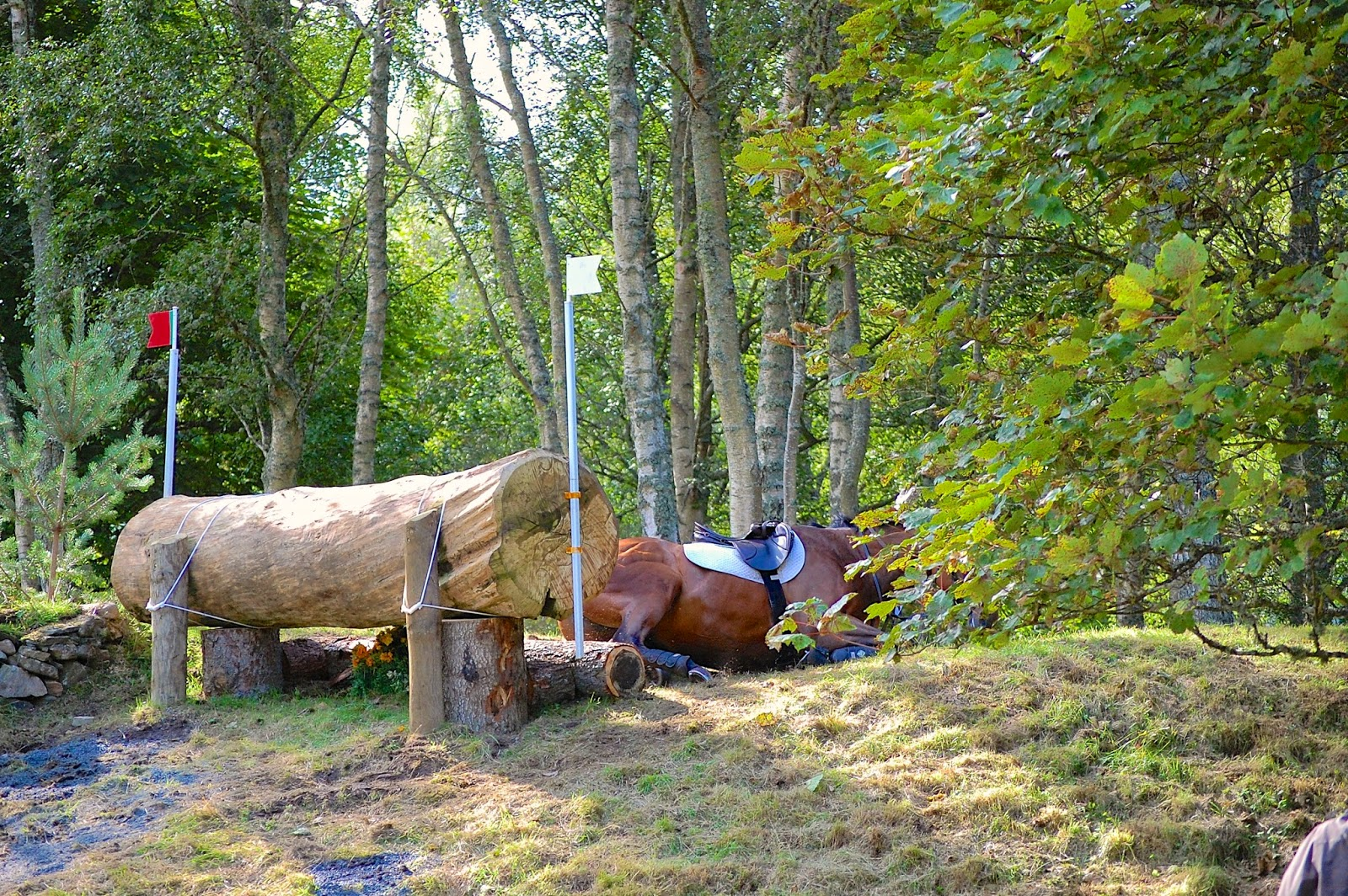 Blair Castle International Horse Trials; horse crash 9