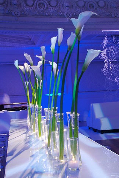 Sonal j shah event consultants llc modern calla lily